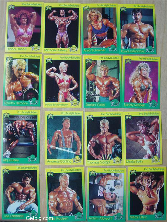 1993 ifbb trading cards complete 100 cards